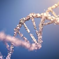 Detecting Methylation with a Highly Sensitive Workflow