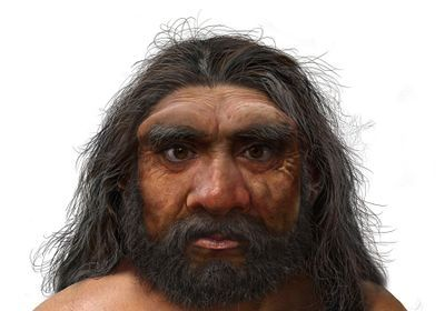 """""""Dragon Man"""" May Replace Neanderthal as Our Closest Relative"""
