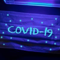 Ensuring RT-PCR Purity with Ultraviolet Light