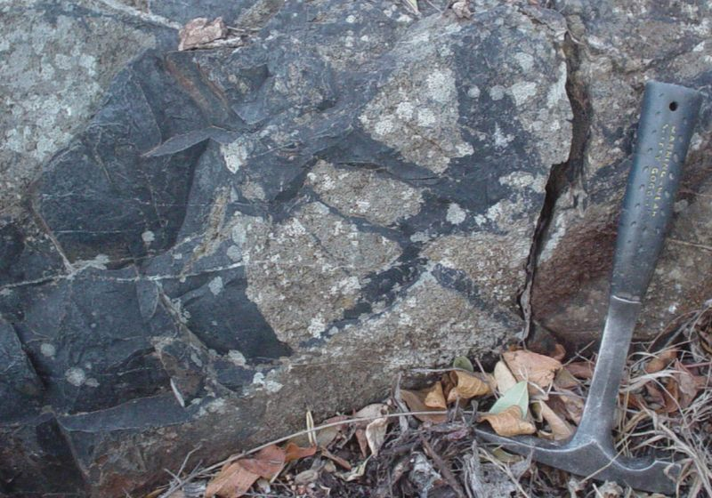 Microbial Fossils Found in 3.4-Billion-Year-Old Subseafloor Rock