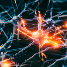 Mapping Neuronal Gene Expression to Understand Pain