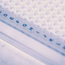 Accelerating qPCR Set-Up with Automated Pipetting
