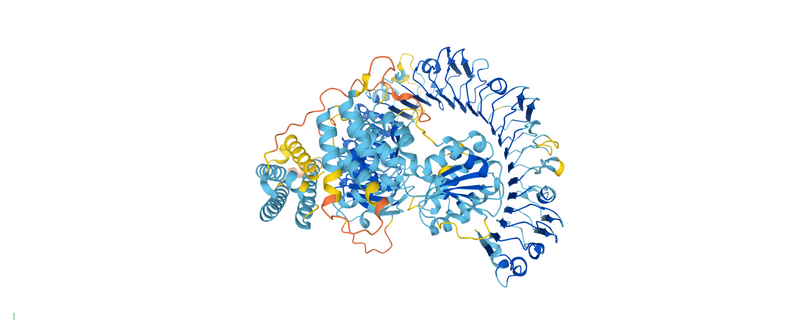 Predictions of Most Human Protein Structures Made Freely Available
