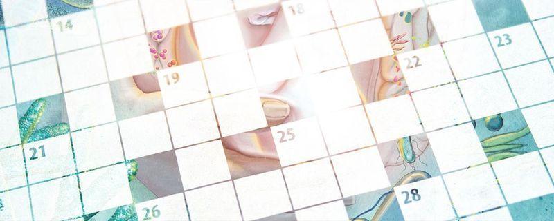 August 2021 Interactive Crossword
