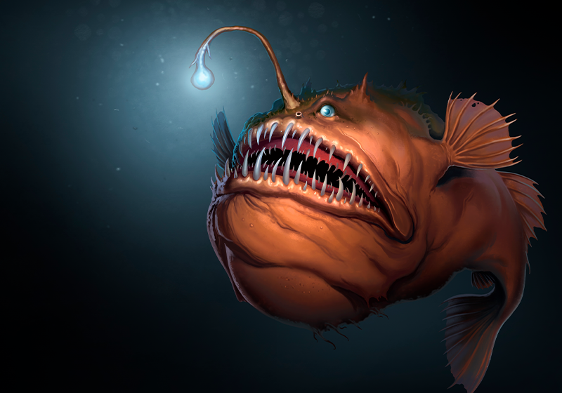 What's Mine is Yours: The Immunogenetics of Mating in Anglerfish