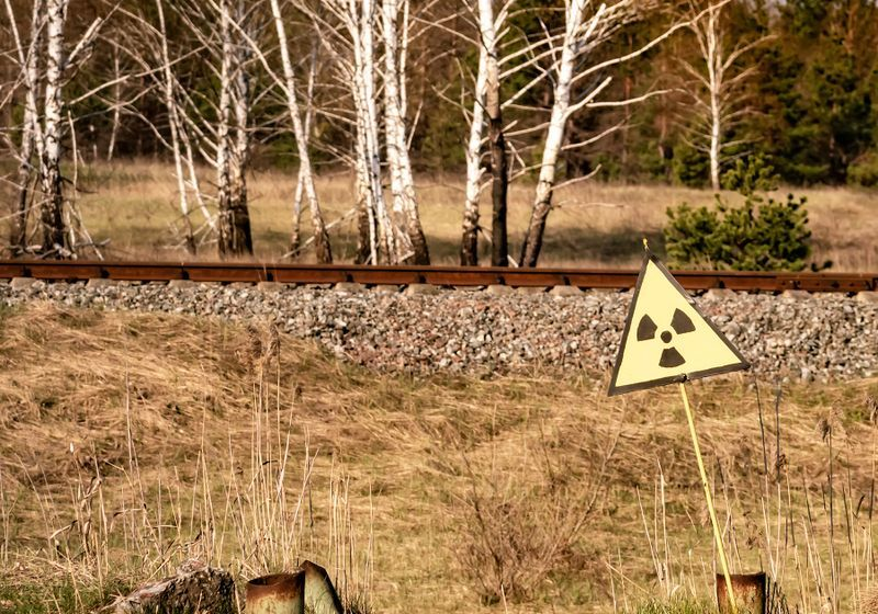 New Chernobyl Initiative Aims to Boost Research on the Area