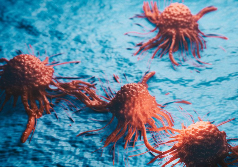 Aging and Cancer: A Complex Relationship
