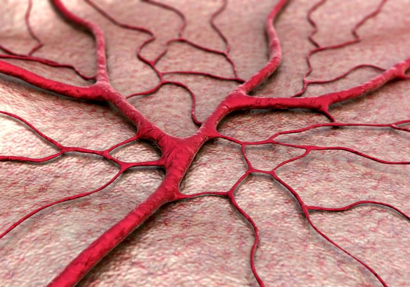 Antisense Oligonucleotides Cross Rodents' Blood-Brain Barrier