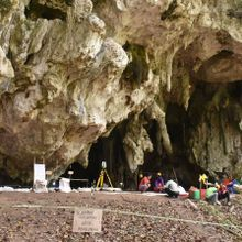 7,200-Year-Old Skeleton Offers Clues to Early Human Migration