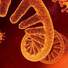 Opinion: The Pandemic and the RNA Sequencing Gap
