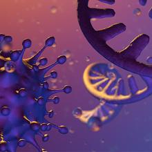Scanning Viral Genomes with 300mer Oligonucleotides