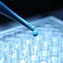CRISPR Screening 101: Strategies for Target Identification