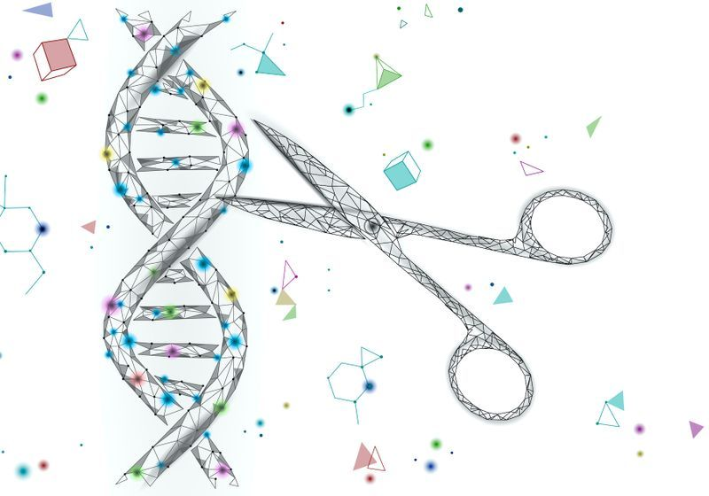 Researchers Uncover New Families of Gene-Editing Enzymes
