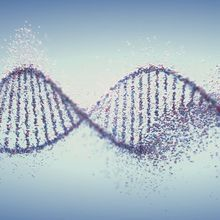 A One-Stop Shop for Accurate Genetic Variant Classification
