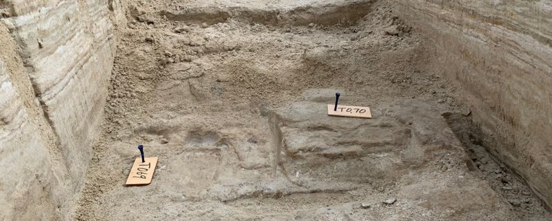 Ancient Human Footprints in New Mexico Dated to Ice Age