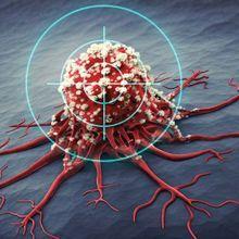 The Scientist Speaks - Homing in on New Anticancer Targets