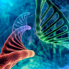 Improving Therapeutic Success: Focus on Cell and Gene Therapy