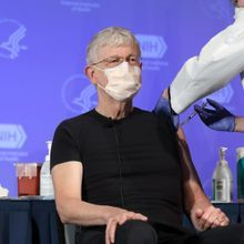 Francis Collins to Retire as NIH Director by Year's End