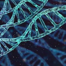 Accelerating Discovery with Single Cell CRISPR Screens