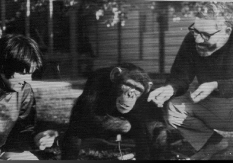 R. Allen Gardner, Who Taught Chimps to Sign, Dies at 91