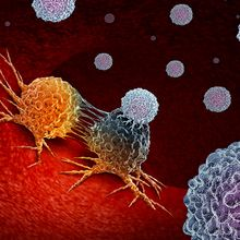 Unraveling the Complexities of Cancer