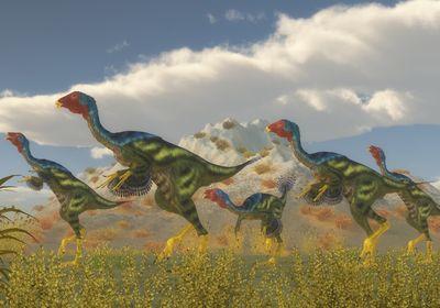 Caudipteryx Dinosaur Flock stock photo