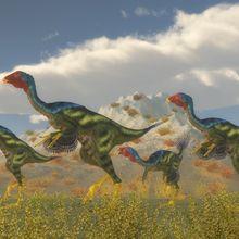 Paleontologists Find Possible Dinosaur DNA
