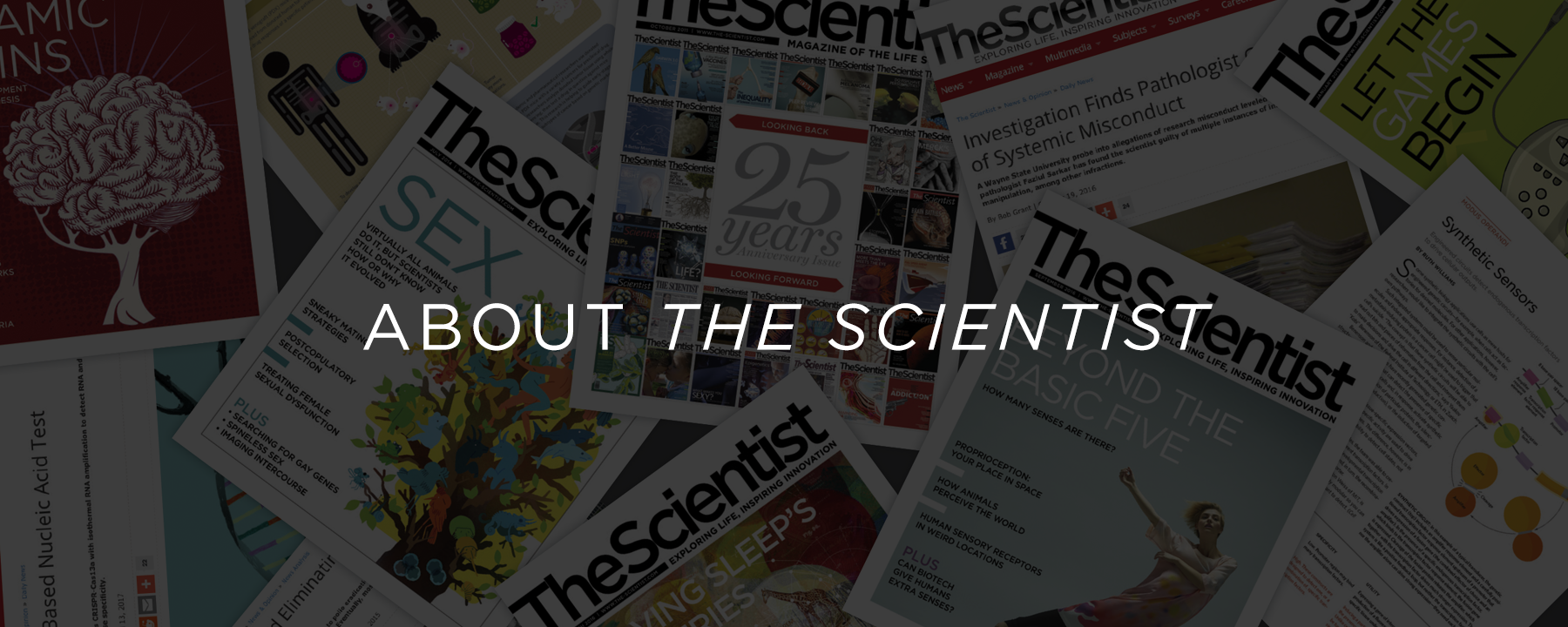 About Us   The Scientist Magazine®